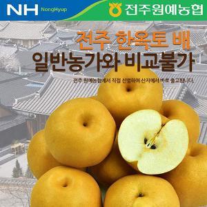 전주 한옥토 배/사과