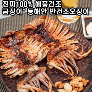 구룡포 반건조 오징어 5마리