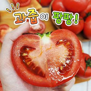 국내산 완숙토마토